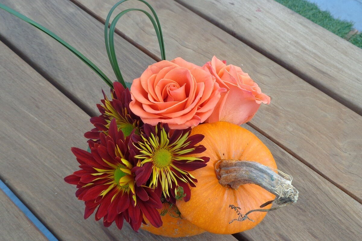 Random Acts of Pumpkin-Kindness