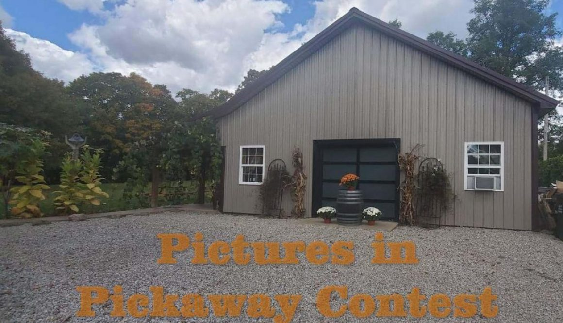 Pictures in Pickaway Contest