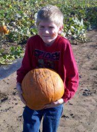 Top 7 Outdoor Fall activities to do in Pickaway County
